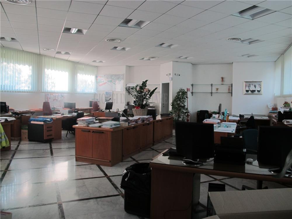 Carrara Vendita Ufficio Nazzano rif: 940
