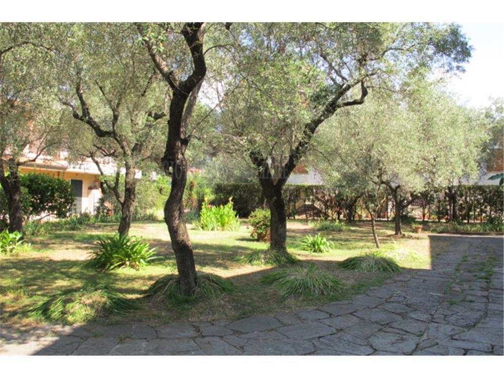 Massa Vendita Villa Singola La Zecca rif: 711
